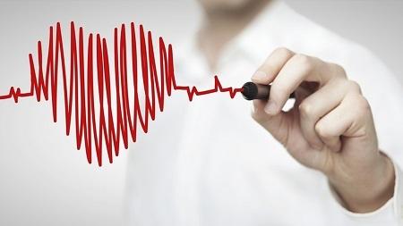 профилактика сердечно сосудистой системы